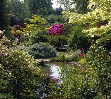 View of Branklyn Garden