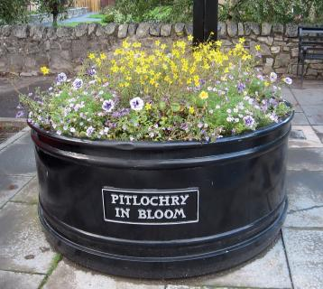 Pitlochry in Bloom planter