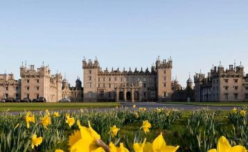 Image: Daffodils at Floors Castle, Kelso. Credit: Image used with permission from VisitScotland and Scottish Viewpoint.