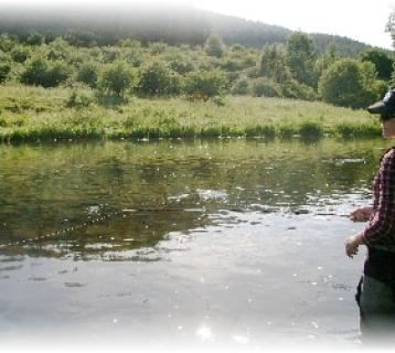 Fly fishing on the River Tweed