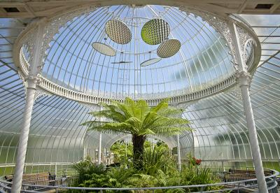 Inside the glasshouse dome at the Botantic Gardens