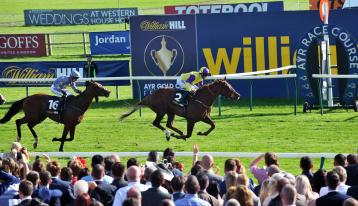 <p>Brando winning the 2016 renewal of the Ayr Gold Cup.</p>